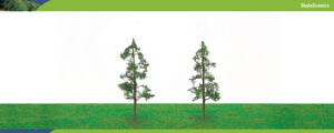 Model Railway Shop - Hornby Scalescenics - Pine Trees x2 (100mm) - R8911