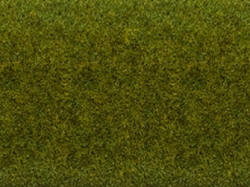 Noch - Static Grass Mat - Meadow (200cm x 100cm) - N00013