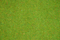 Noch - Static Grass Mat - Flowered Grass (120cm x 60cm) - N00270