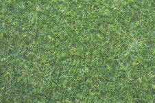 Noch - Noch - Natur+ Meadow Mat - Dark Green 6mm Grass- N00404