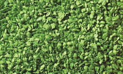 Noch - Leaves - Light Green 50g - N07142