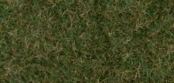 07281 - Noch Wild Grass Foliage - Dark Green