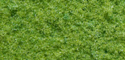 N07350 - Noch - Structure Flock - Spring Green Coarse 8mm (10g)