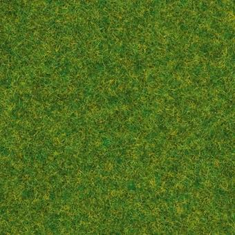 N08214 noch static grass ornamental lawn 20g for Ornamental lawn grass