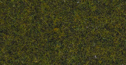 Noch - Static Grass - Meadow N08312 / N50220